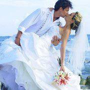Wedding Tropics
